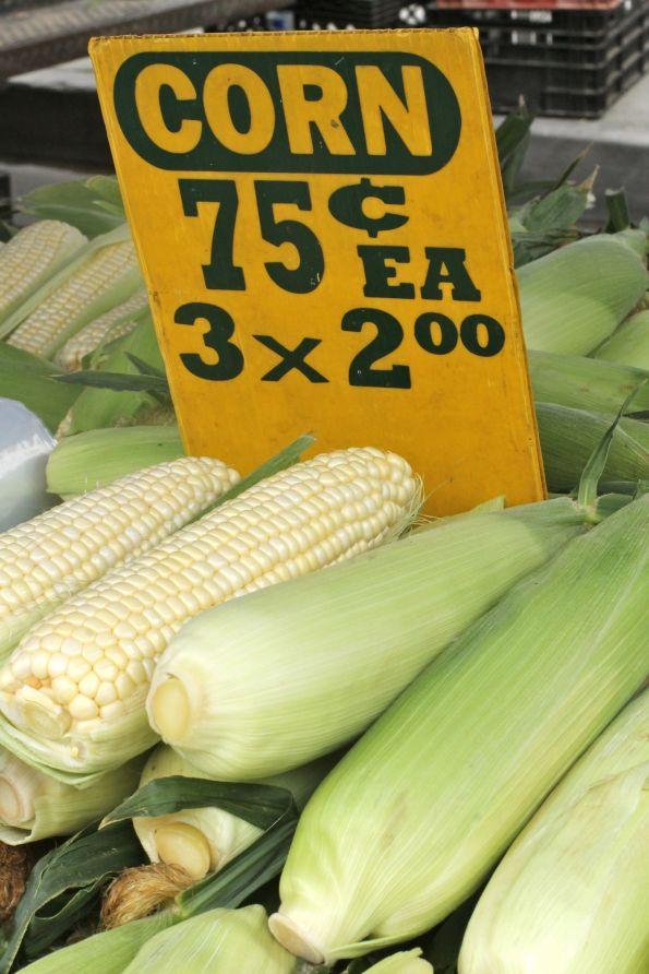 corn at fm