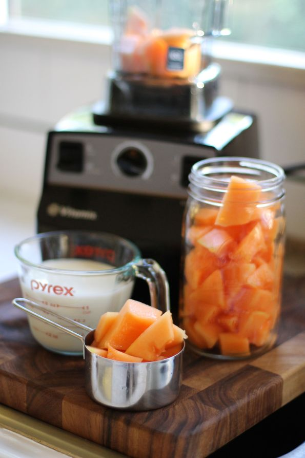 melon vitamix